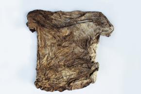 """06FS kompost shirt 03 Trigema - """"Abfall ist Nährstoff"""""""