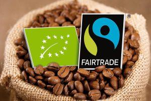 transfair - Fair geht voran