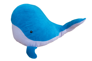 seashepard WAL IMG 2345 - Aus dem Bauch heraus