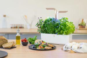 varitable - Garten für alle